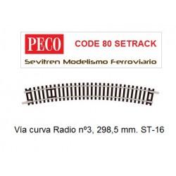 Vía curva Radio nº3, 298,5...